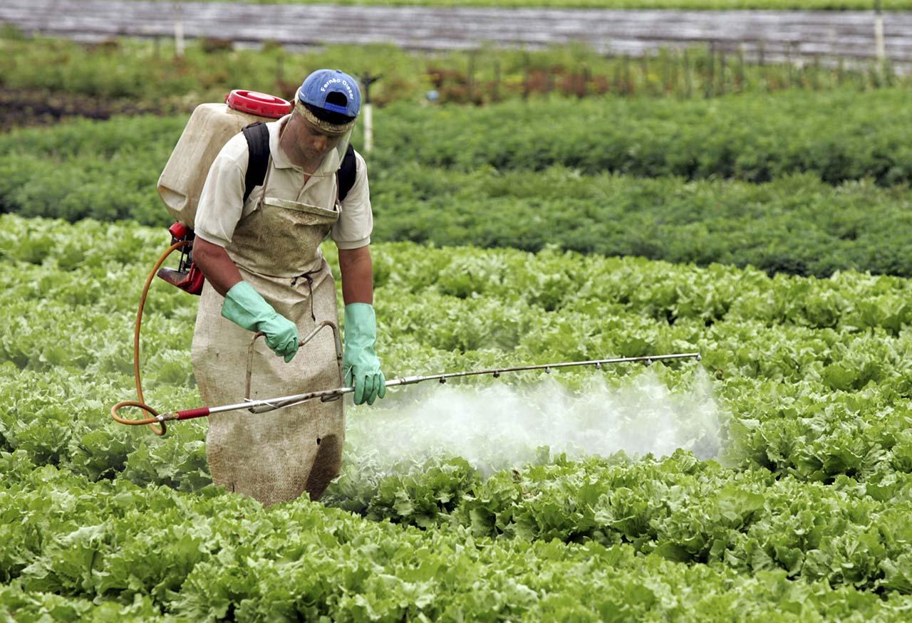 Los estudios se realizaron a partir de una denuncia radicada en San Nicolás. Las pericias indican que las napas, el agua de red y la sangre de los vecinos están contaminadas con agrotóxicos.