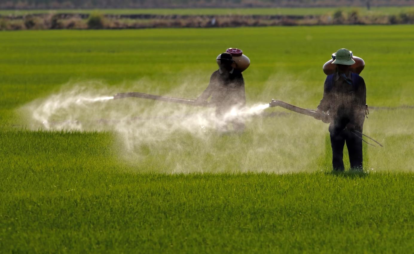 El grupo químico y farmacéutico alemán Bayer enfrenta 18.400 demandas en Estados Unidos contra el herbicida con glifosato de su filial Monsanto, producto sospechoso de provocar cáncer, según datos que trascendieron este martes. El último registro era de abril, con 13.400 demandas.