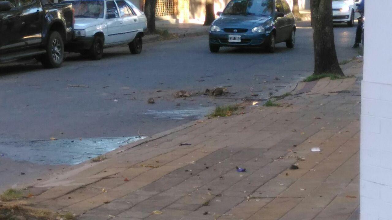 Un joven de 20 años de edad circulaba en su moto en una zona céntrica de la ciudad y perdió la vida al chocar contra un árbol. El hecho ocurrió pasadas las 7 de la mañana de este jueves 29 de marzo y los detalles del hecho aún están siendo investigados.