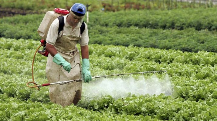 Fumigaciones con agrotóxicos: procesan a tres productores rurales