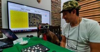 Ramallo: comerciante ingenioso creó un bingo virtual que divierte a los vecinos cada noche