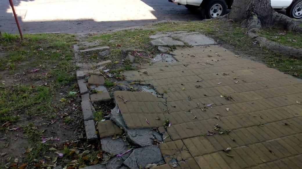 Esa fue la frase de Patricio, un vecino cansando del estado de las aceras de la ciudad. Baldosas rotas, raíces levantadas, autos mal estacionados y ausencia de rampas en las esquinas, son algunos de los problemas.