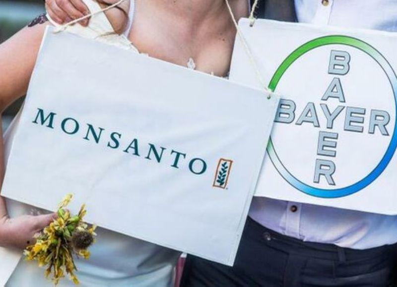 Monsanto se vanagloria del aumento de ventas d su herbicida con glifosato Roundup en plena oleada de demandas por su efecto cancerígeno