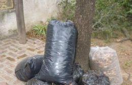 Servicio de recolección de ramas, escombros y residuos voluminosos
