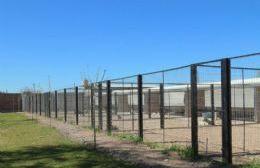 Bienestar animal: ya son once los caniles inaugurados en el barrio Quinta Mastrángelo