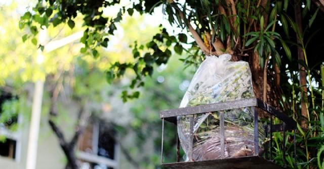 Atención vecinos: Recolección de residuos durante las fiestas