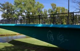 """Piden denominar """"Pasaje de los Pañuelos de las Madres de Plaza de Mayo"""" al puente de calle Estrada"""
