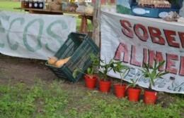 Anunciaron que el día 23 de enero, abrirá sus puertas la Feria Verde Agroecológica de la ciudad, con productos frescos y orgánicos para llevar a las casas.