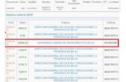 Robeto Zucarelli cobra 48 mil pesos de un contrato en el Senado bonarense.