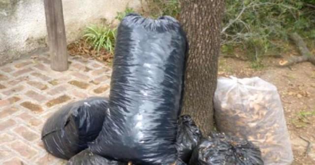 Cronograma de recolección de residuos voluminosos para el mes de enero