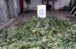 Allanamientos por comercio de drogas en Colón y Pergamino