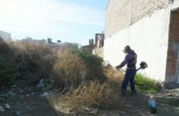 La comuna le aclaró a los vecinos que es obligatorio cumplir con el desmalezamiento del terreno